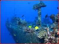 mahi shipwreck oahu