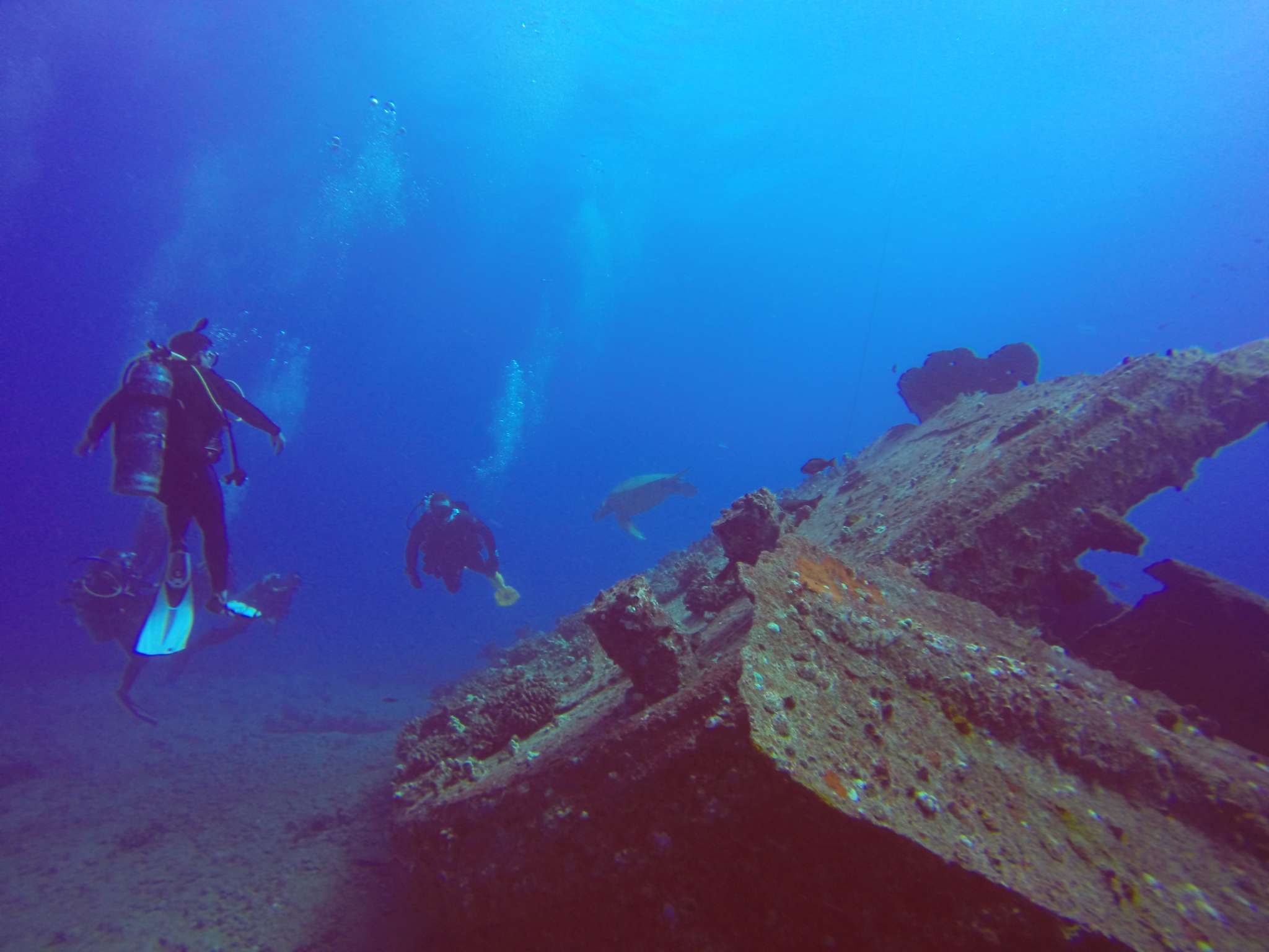 Dive Hawaii Maunalua Bay 26