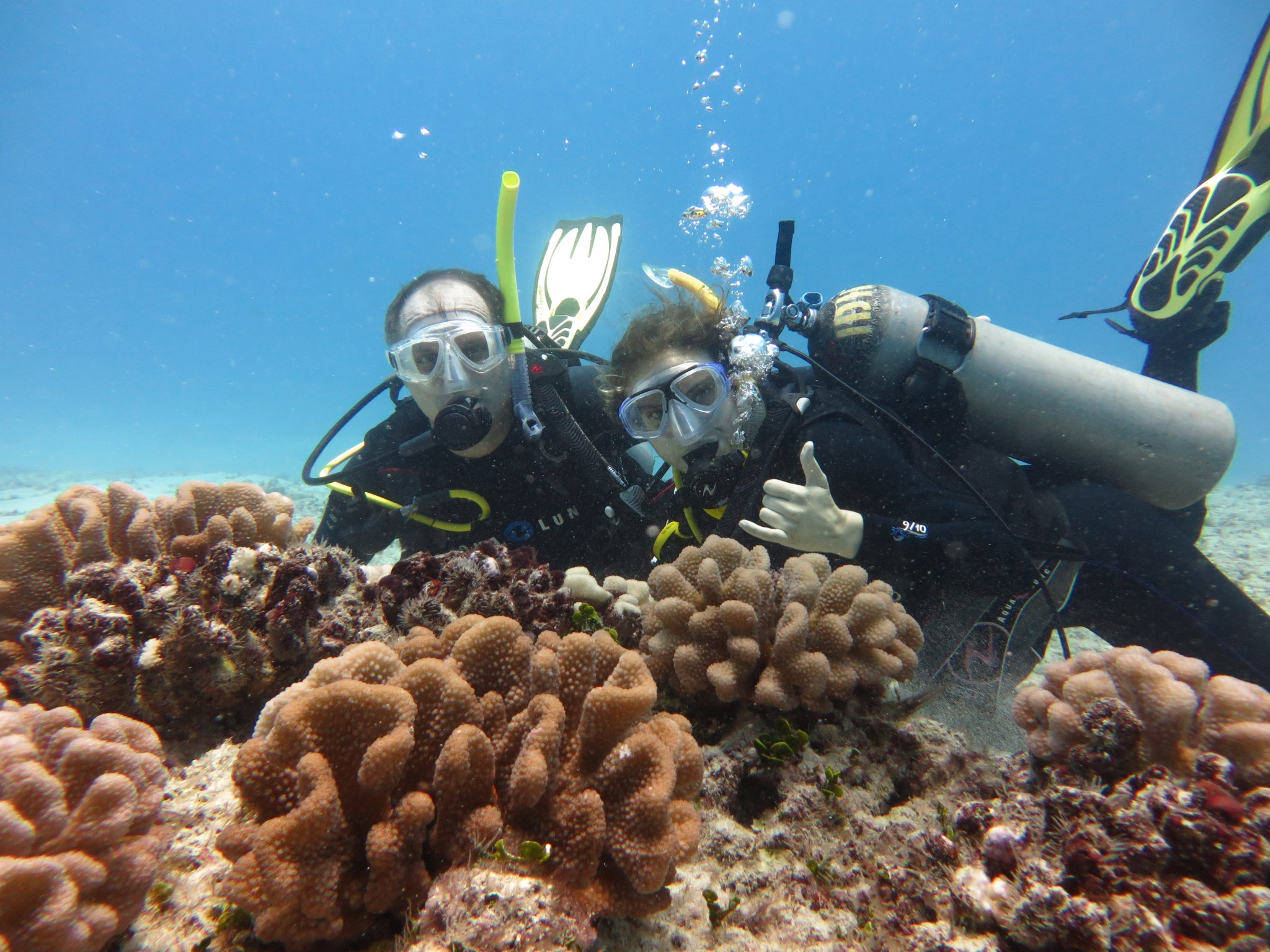Scuba Diving Certification Prices In Hawaii Island Divers Hawaii