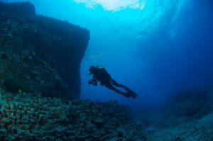 10 Tips To Help You Become a Better Scuba Diver