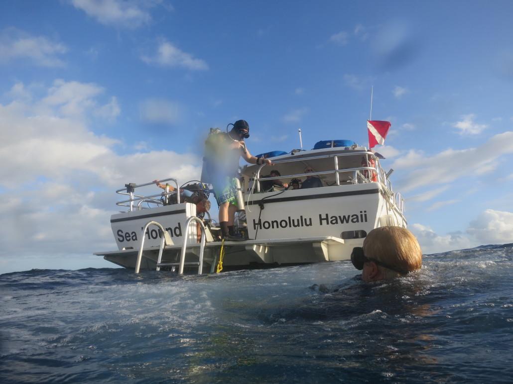 hawaii scuba university archives island divers hawaii