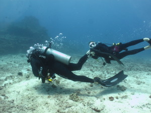 Vacation Scuba Diving Packages For Everyone