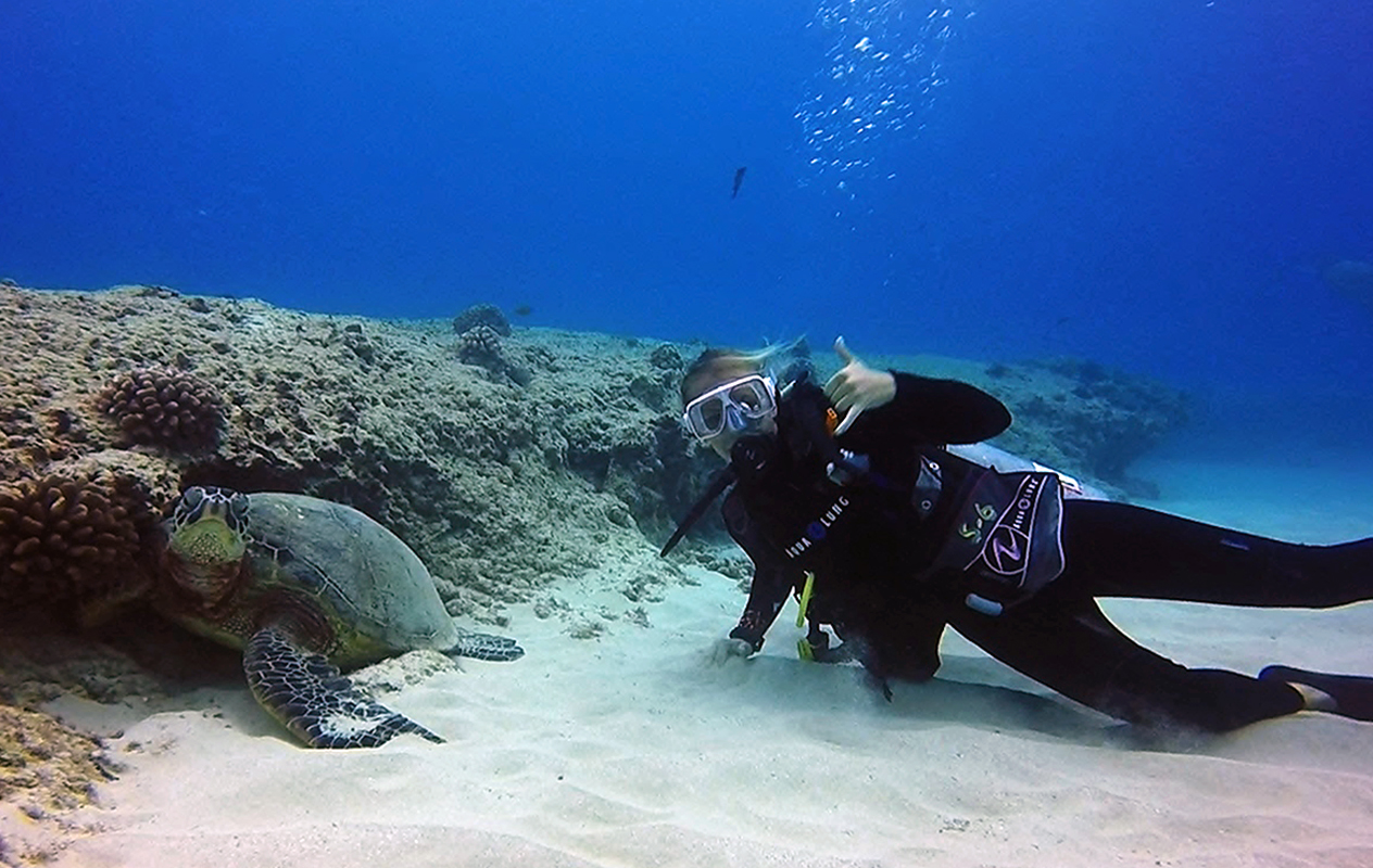 5 of the best Dive Sites in Curacao Pinned on the Map