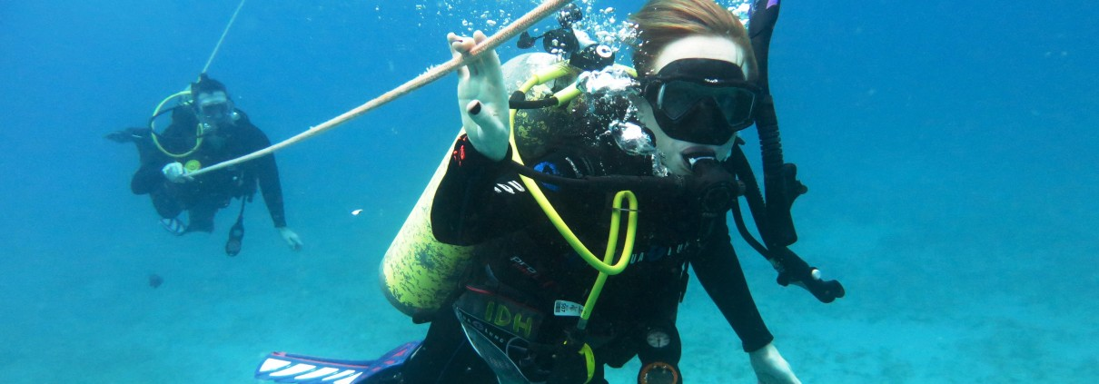 Ssi Naui Padi Dive Courses On Oahu Hawaii Island