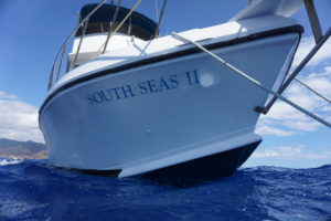 dive boat south seas to on a freediving charter